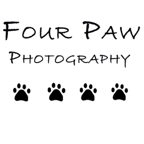 Four Paw Photography